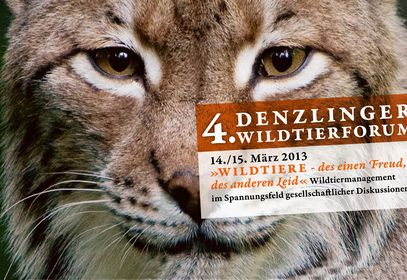 4. Denzlinger Wildtierforum